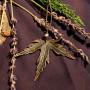 Кленовый лист с лабрадором кулон