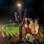 Рунический Грен свеча-ритуал восковая