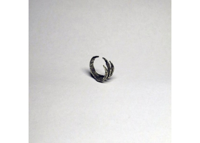 Когти кольцо