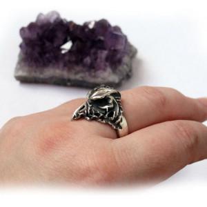 Ворон кольцо