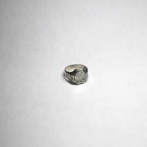 Паутина кольцо